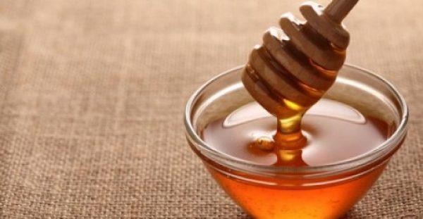 Έρευνα από το ΑΠΘ εξέτασε 48 διαφορετικά ελληνικά μέλια – Δείτε ποιο είναι το καλύτερο