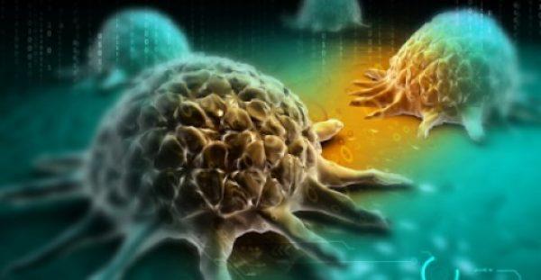 Καταστρέφει καρκινικά κύτταρα και το έχουν οι Έλληνες