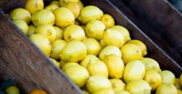 Πώς θα διατηρήσετε φρέσκα τα λεμόνια για τρεις μήνες