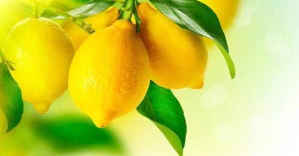 12 Απίστευτες Χρήσεις του Λεμονιού!