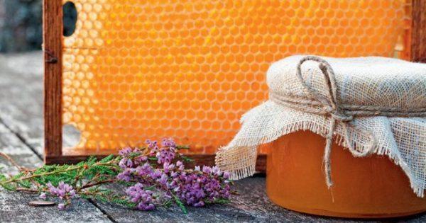 Κολικός νεφρού: Τι ρόλο μπορεί να παίξει το μέλι ρείκι