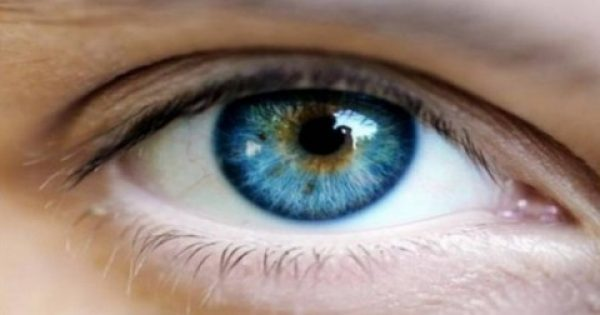 Ποιο ελληνικό μπαχάρι θωρακίζει τα μάτια απο 90 παθήσεις!