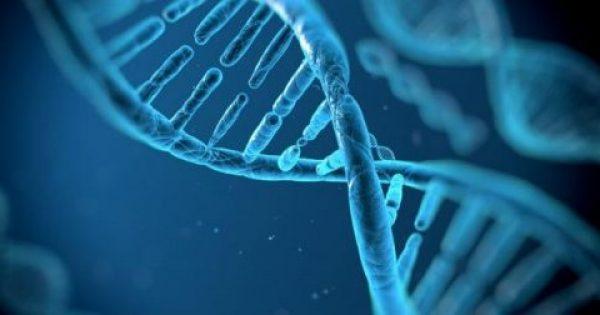 Επιστήμονες κάνουν τα «γερασμένα κύτταρα… πιο νέα»