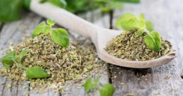 Ρίγανη: όσα πρέπει να ξέρουμε για το μυρωδάτο μπαχαρικό