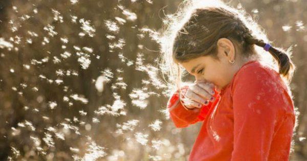 Αλλεργίες της άνοιξης: Πώς να τις αντιμετωπίσετε!!!