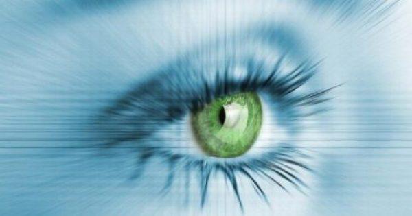 Το θαυματουργικό ελληνικό βότανο που σας γλιτώνει από τη σταδιακή τύφλωση