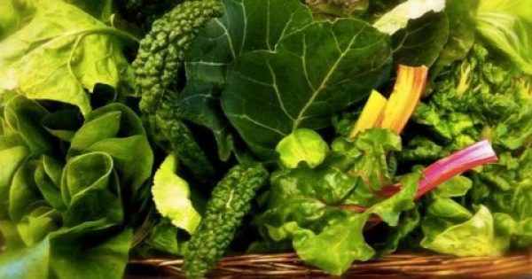 Πράσινα φυλλώδη λαχανικά για γερό μυαλό