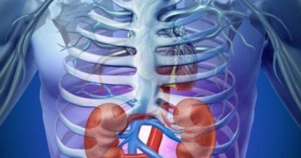 Νεφρική ανεπάρκεια: Προσοχή στα σημάδια