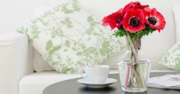 Για Πολυάσχολους: Πώς θα Κάνετε Κάθε Δωμάτιο του Σπιτιού να Μοσχομυρίσει!