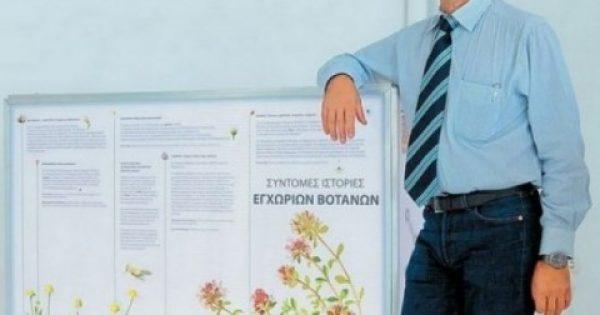 Η επονομαζόμενη «κρητική ασπιρίνη» σε ένα μήνα στα ράφια των φαρμακείων της Ελλάδας