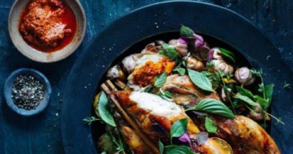 Η δίαιτα θέλει… χρώμα – Όποιος χρησιμοποιεί μπλε πιάτα στο φαγητό του, τρώει λιγότερο