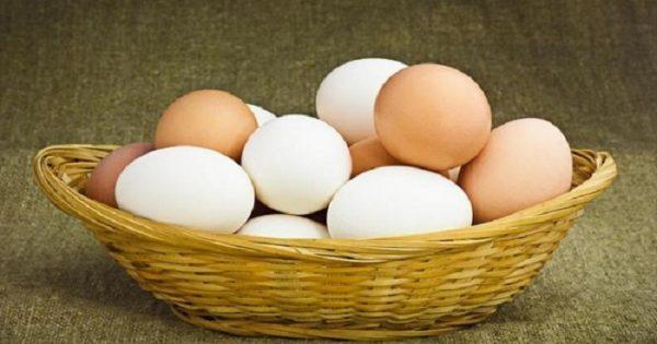 Καφέ και λευκά αυγά. Γιατί διαφέρουν, ποια είναι καλύτερα