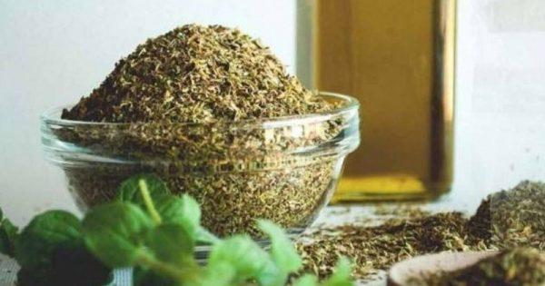 Δυο ελληνικά βότανα που είναι φυσικά αντιβιοτικά