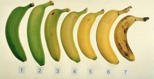 Μαντέψτε ποια από αυτές τις μπανάνες είναι καλύτερη για εσάς- η ώριμη ή η ανώριμη;