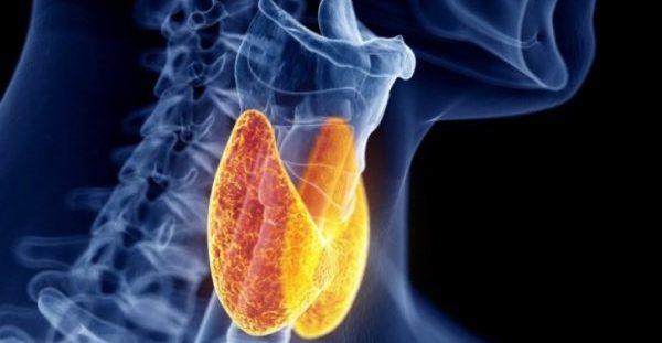 Θυρεοειδίτιδα Χασιμότο: Τι είναι, συμπτώματα και πότε πρέπει να σας δει γιατρός -ΒΙΝΤΕΟ