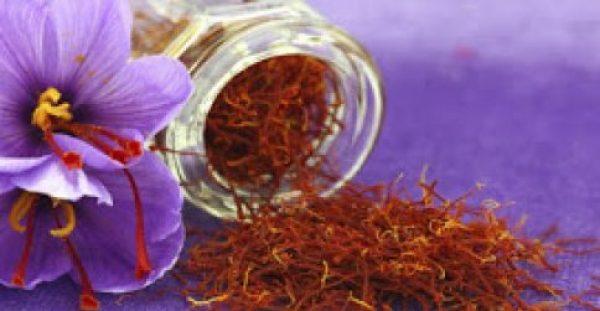 Κρόκος Κοζάνης ή σαφράν: Το υπερπολύτιμο μπαχαρικό με τις ανεκτίμητες ιδιότητες