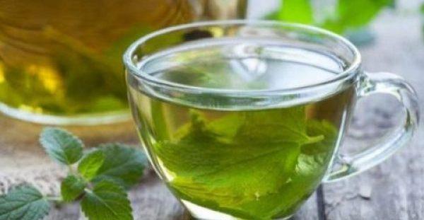 Τσάι ρίγανης: Τα οφέλη του στην υγεία σας και τρόπος παρασκευής